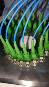 SC APC connector polishing